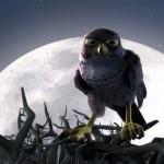 tendai - Drôles d'oiseaux