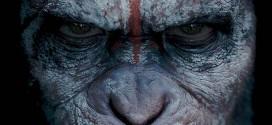 Avant-première La Planète des singes : l'affrontement