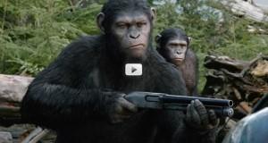 La planète des singes L'affrontement