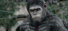 La planète des singes : l'affrontement – La critique